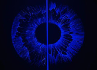 "<span class=""nome_artista"">Nicola Evangelisti<p class=""nome_opera"">Spirale Aurea H3</p><p class=""info_opera"">Struttura spaziale luminosa a mutamento cromatico 2016 - 61,6x61,6x7,6 cm</p></span>"