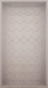 """<span class=""""nome_artista"""">Emanuela Fiorelli<p class=""""nome_opera"""">Semplice-mente </p><p class=""""info_opera""""> tarlatana tinta, filo di cotone, serigrafia <br>2016, 113x63x11 </p></span>"""